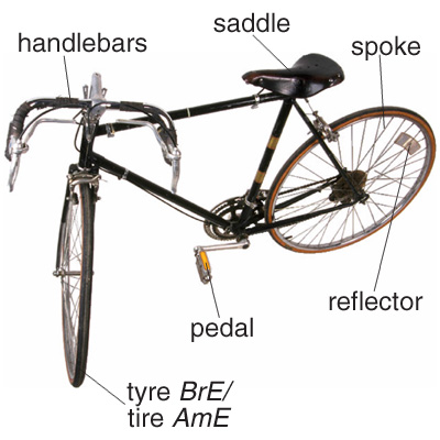 bicycle.jpg