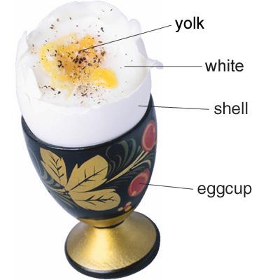 egg_cup.jpg